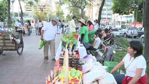 People on the middle of an avenue in an organic market. Stands selling eco-products in Chapultepec A Footage