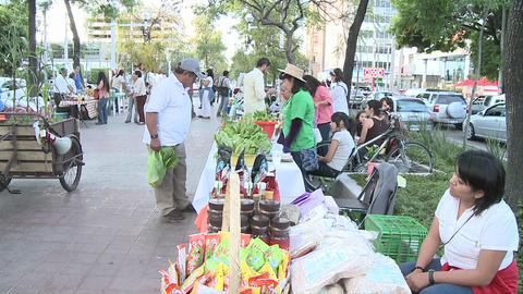 People on the middle of an avenue in an organic market.... Stock Video Footage