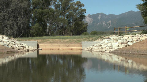 Restored wetlands at the Ojai Meadow Preserve in Ojai, California Footage