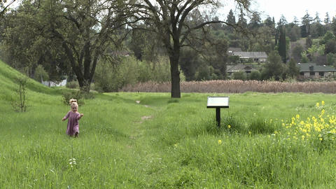 A girl walking through a restored wetlands at the Ojai... Stock Video Footage