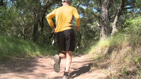 Point of view of a man trail running in the forest on the... Stock Video Footage