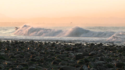 Pan of surfer catching a wave at Surfers Point in... Stock Video Footage