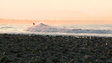 Pan of surfer catching a wave at Surfers Point in Ventura, California Footage