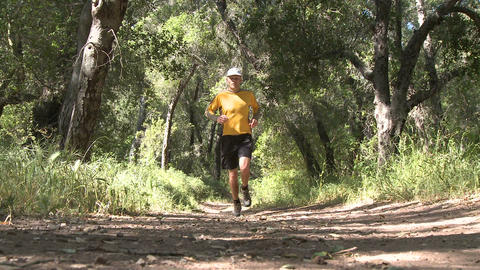 Low angle of man trail running in the forest on the... Stock Video Footage
