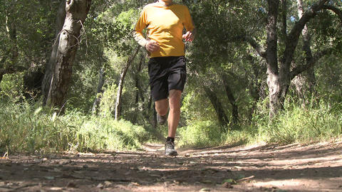 Low angle of man trail running in the forest on the Ventura River Preserve in Ojai, California Footage