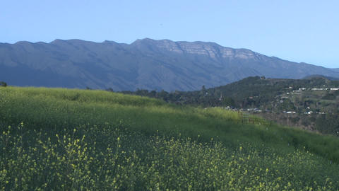 Meadow and the Topa Topa mountain in Ojai, California Stock Video Footage
