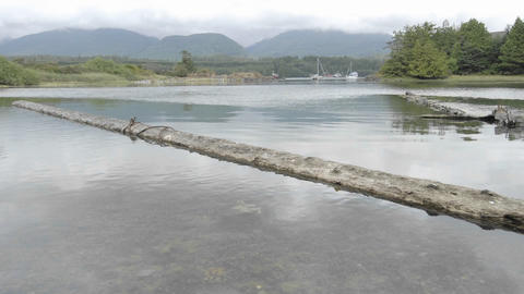 Time lapse of incoming tide at Ucluelet Harbor on... Stock Video Footage