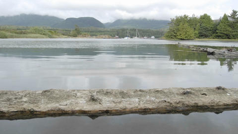 Time lapse of incoming tide at Ucluelet Harbor on Vancouver Island in British Columbia, Canada Footage