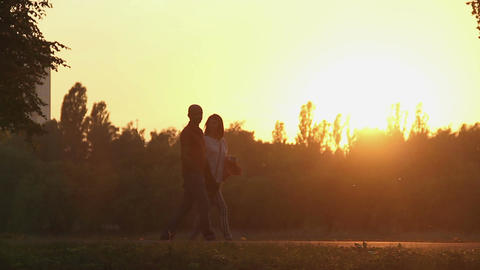 Happy married couple strolling in the park in golden sunset rays, magic hour Footage