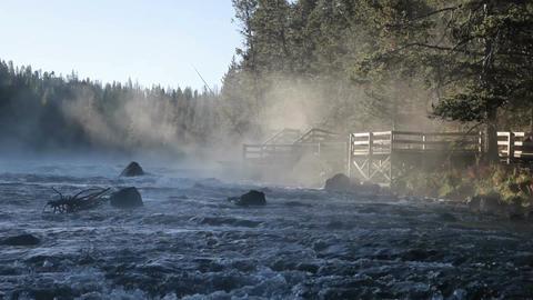 River boardwalk misty P HD 2539 Footage