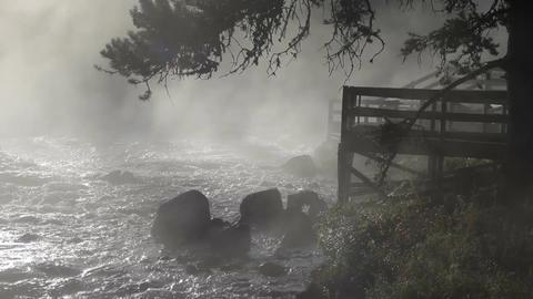 River boardwalk overlook in mist P HD 2544 Footage