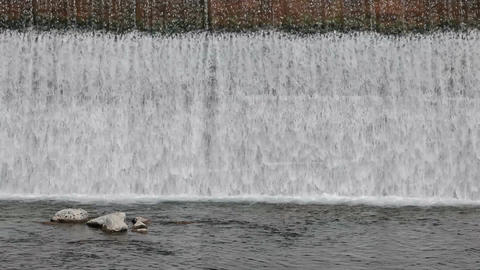 River spillway at dam P HD 2288 Footage