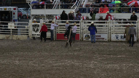 Rodeo cowboy walks back to chutes HD 269 Footage