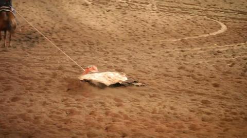 Rodeo hide race P HD 1125 Footage