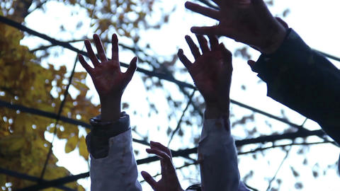 Many monsters stretching bloody hands up, trying to escape from captivity Live Action