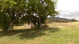 Rural tree rope swing log cabin HD 001 ビデオ