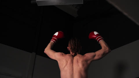 Back view of muscular male fighter in boxing gloves celebrating victory GIF