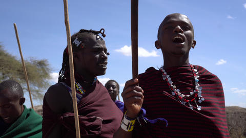 Close Up of Maasai Tribe Males Dancing With Sticks. African Ethnic Group Ritual Live Action