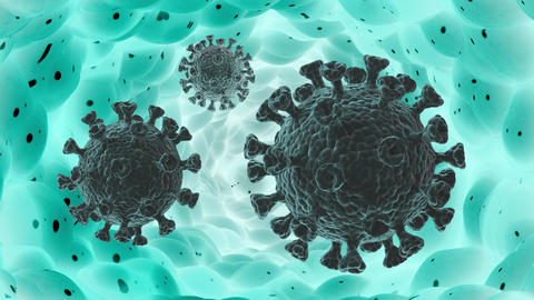 A coronavirus moving inside the body. Looped high-quality video CG動画
