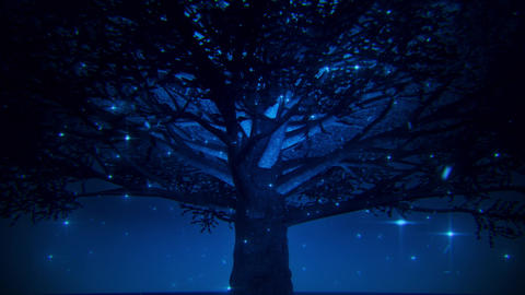 Blue Magic Tree by Night VJ Loop Motion Background Animation