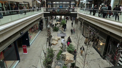 Shopping Mall Christmas Holiday rush indoor stores HD 0235 Footage