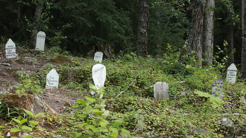 Skagway gold rush cemetery forest Alaska P HD 0098 Footage