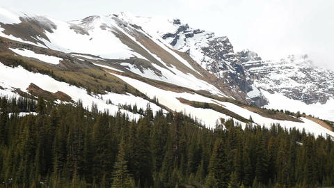 Snow field Canada Rocky Mountains pan P HD 7542 Footage