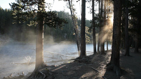 Sunrays misty river forest P HD 2535 Footage
