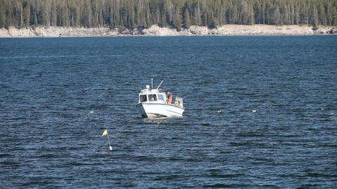 Troller boat Yellowstone Lake P HD 2663 Footage