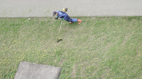 Lawn mowing by a manual lawn Live Action