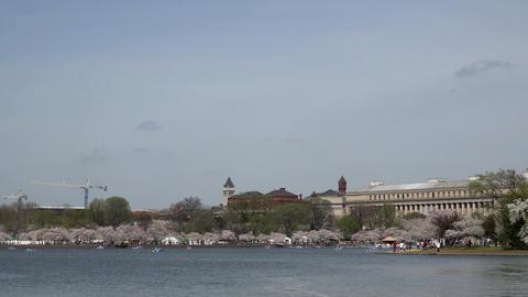 Washington DC Washington to Jefferson Monument 4K 043 Footage