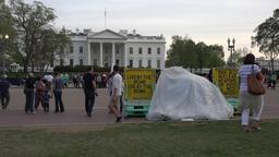 Washington DC White House anti war peace demonstrator 4K Footage