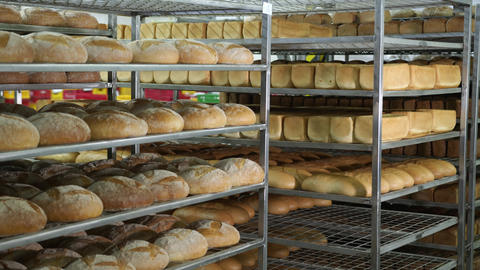 Production of bakery products. Freshly baked ruddy bread lies on the shelves in Live Action
