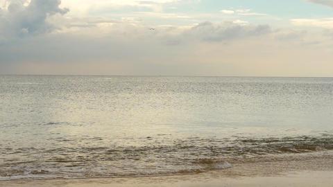 Airplane approaching over ocean beach Acción en vivo