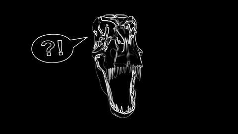 T-Rex Skull Loop 07 CG動画