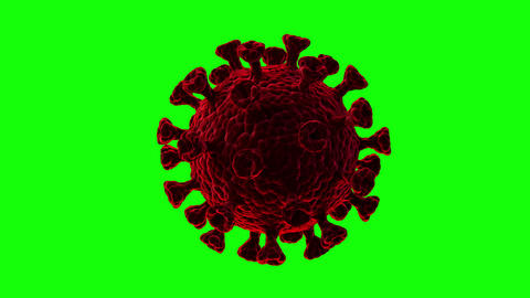 Pulsating movements of the coronavirus close-up on a green background. Looped video Animation