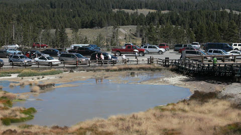 Yellowstone Dragon Mud area P HD 2342 Footage