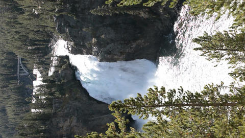 Yellowstone Falls trees vertical P HD 2347 Footage