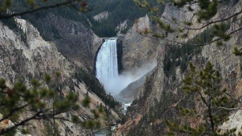 Yellowstone Lower Falls thru trees P HD 2362 Footage