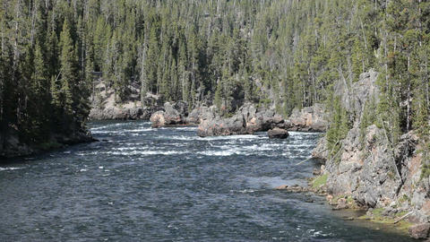 Yellowstone River above falls P HD 2385 Footage