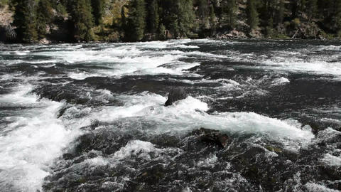 Yellowstone River pan P HD 2636 Footage