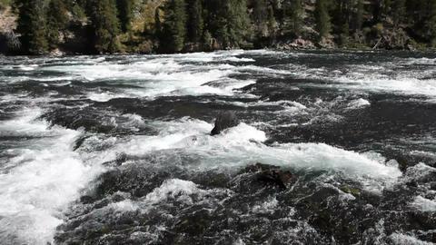Yellowstone River pan P HD 2636 Live Action