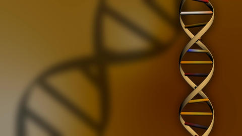 DNA Molecule Animation