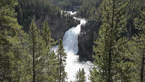 Yellowstone Upper Falls bridge P HD 2353 Footage