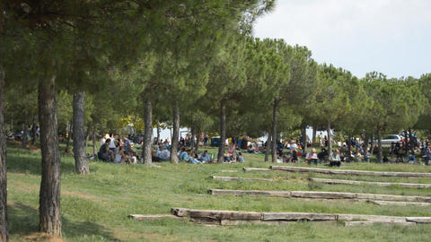 People Picnic At The Park Footage
