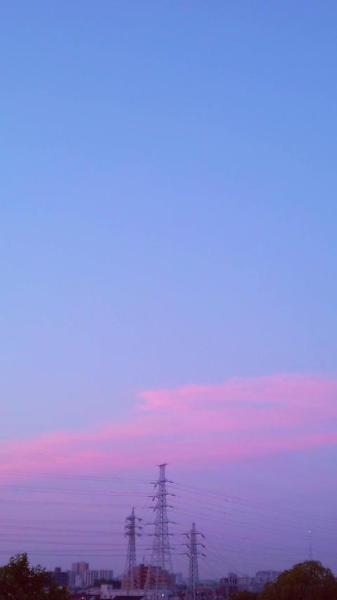 Sunrise_portrait Live Action