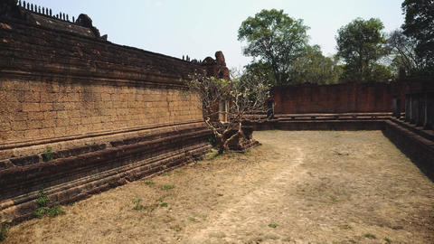 Ruins Of Abandon Temple - Angkor Wat Live Action