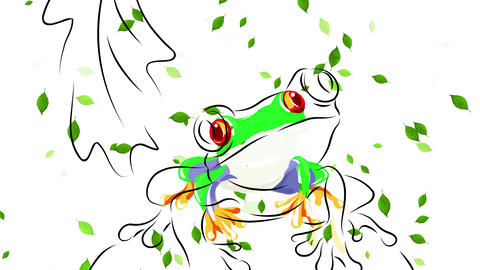 beautiful scene with a red eye frog living in its natural habitat in the jungle suggesting the Animation