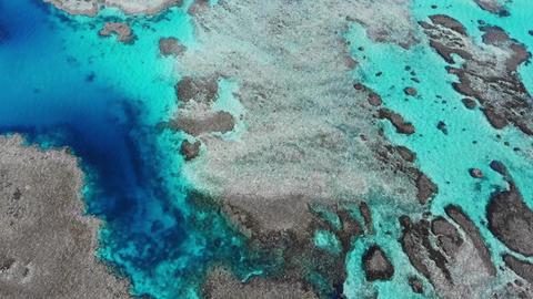 石垣島の秘境「浦崎」、 サンゴ礁の青い海、俯瞰・横進 ライブ動画
