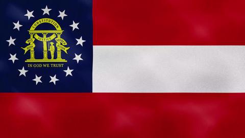 Georgia dense flag fabric wavers, background loop Animation
